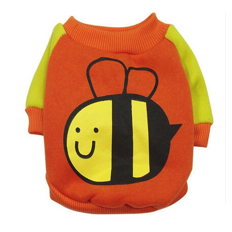 Sweat Bee orange et jaune