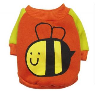 Sweat Bee orange et jaune