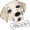 Amelia Pet